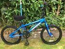 "Kids Apollo BMX Bike (Wheel Size 20"") – Fully Serviced"