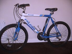 Falcon Assault Mountain Bike, AS NEW Hardly used, Great Xmas Gift (plus extras)