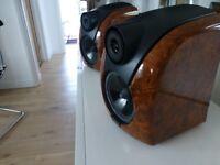 Rogers Db101 speakers