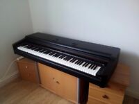 Digital Piano - casio celvanio AP5 fully weighted keys 88