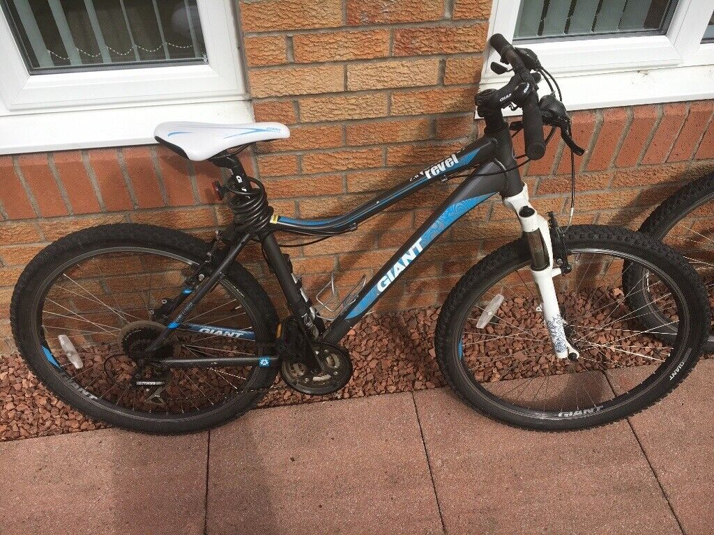 Giant Mountain Bikes for Sale | in Irvine, North Ayrshire | Gumtree