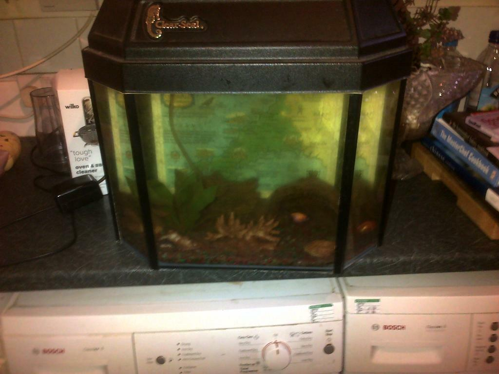 Fish Tank Reptile Aquarium With Lid Can Deliver To Your