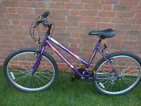 Universal Blowout Wild Thing Women's/Girl's Mountain Bike