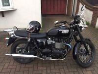Triumph Bonneville T100 Black - Like New - Low mileage.