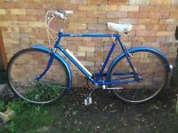 Ambler Road Bike
