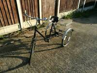 Vintage pashley tricycle