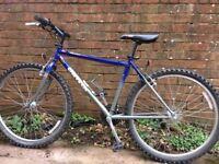 Youth's bike