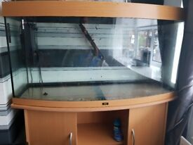 Juwel 260l bowed glass fish tank good condition
