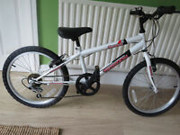 "boys 20"" mountain bike...""terrain oregon""....GREAT CONDITION"