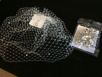 Brand New - Birdcage veil and broach (for hair or clothes)