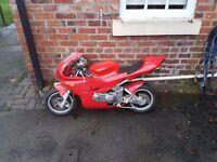 Midi moto 49cc water cooled and x2 midi moto