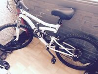 mountain bike -nearly brand new -26 wheel