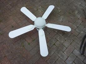 Ceiling fan/light combination
