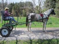 Horse/Draft Fore Cart