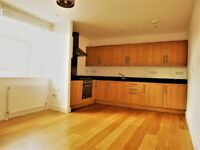 Beautiful Modern 1 double bedroom Apartment opposite Stockwell Station - SW8 1UQ - Available ASAP
