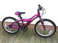 Girls giant taffy bike.