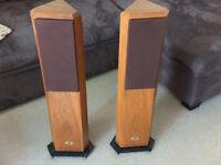 Rare Musical Technology Kestrel Speakers