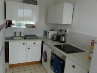 Flat in Falmouth - stunning views - parking space -