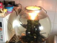 Tropical globe tank & fish
