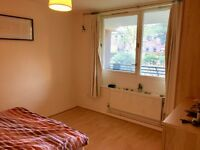 Large double room in a clean and friendly flat (bills inc)