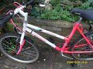 mistique probike mountain bike, 24 inch wheels ,