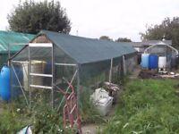 Aluminium Greenhouse 40ft x 6ft £100 OVNO