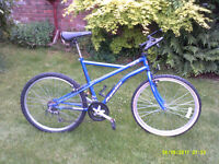 RALEIGH HEAT MOUNTAIN BIKE ONE OF MANY QUALITY BICYCLES FOR SALE