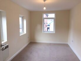BRAND NEW REFURBISHED 2 BEDROOM APARTMENT AND HOUSE TO RENT IN THORNEYWOOD (NG3)