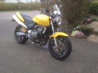 Honda Hornet Cb600 F2. Immaculate, new mot. Px/swap supermoto or sportsbike