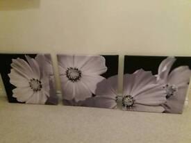 Set of 3 flower canvasses