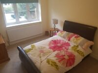Double room in annex to rent in Stanway, Colchester.