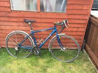 Dawes Horizon bike