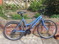 Women's blue bike