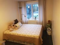Br5Bright and warm room rent. Battersea