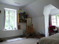 Spacious double room in shared two bedroom flat, Longdown, Exeter