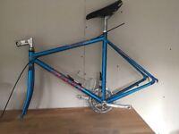 Giant Peloton 8400 sport frame and forks, road bike 53cm