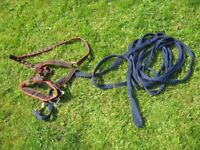 Horse Riding Equipment - Cavesson and Lunge line
