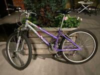 Woman's mountain bike Falcon Arizona