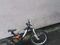 Carrera kids bike