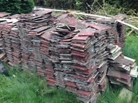 FREE Roofing tiles (lots of tiles to give away)