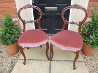 "Antique ""Baloon Back"" Oak Dining Chairs - Superb - Vintage"