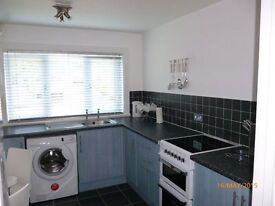 Immaculate large two bedroom furnished first floor apartment, parking available, close to amenities
