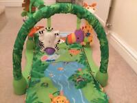 Fisher Price Baby Gym