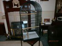 Large Budgie/Cockatiel Cage l