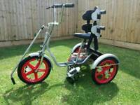 Special needs/disabled childs trike