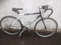 Blade Muddyfox. Male road bike. Fully serviced, fully safe and ready to go.