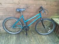 ADULT LADIES APOLLO BIKE WITH 15 GEARS