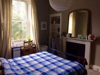 Bright, peaceful double room in refurbished 2 bed Marchmont flat