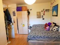 Spacious double room with awesome flatmates!