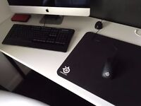 Steelseries computer keyboard(Apex raw) and mouse(Rival 300) for the gamer